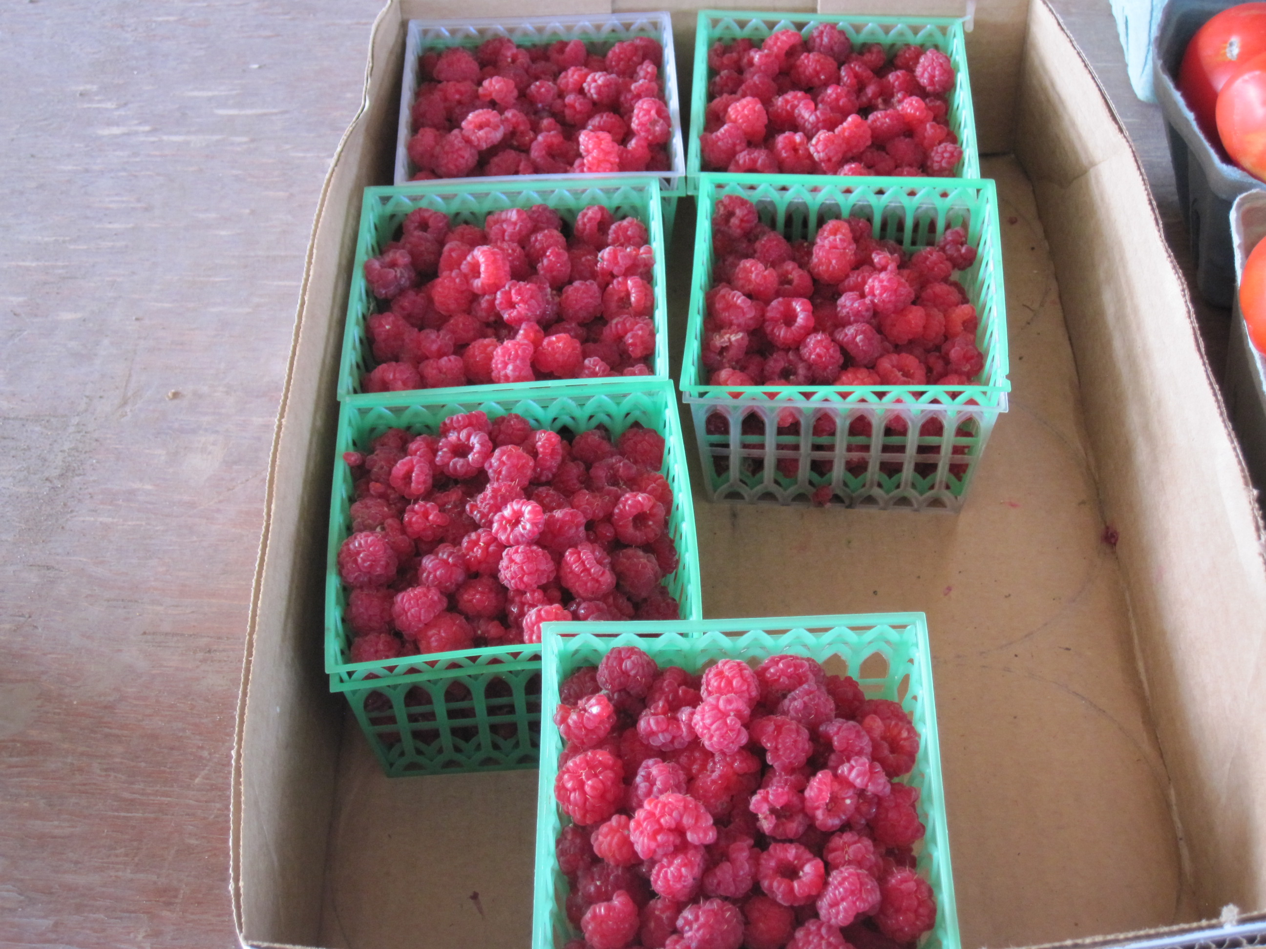 Our rasberries